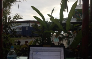 My office for two weeks in Bocas Del Toro